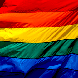 Survey: LGBT Adults Concerned About Support