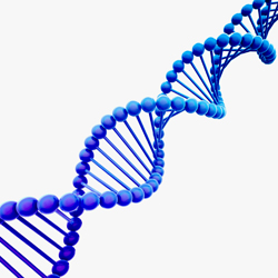 Charity is Front for Genetic Testing Scheme
