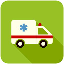 Ambulance Owners, Managers Plead Guilty